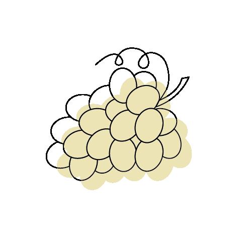 Weinreben